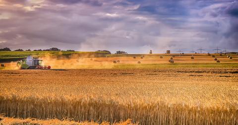 uploads/2018/04/agriculture-3279024_1280.jpg