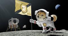 Dogecoin dog on the moon