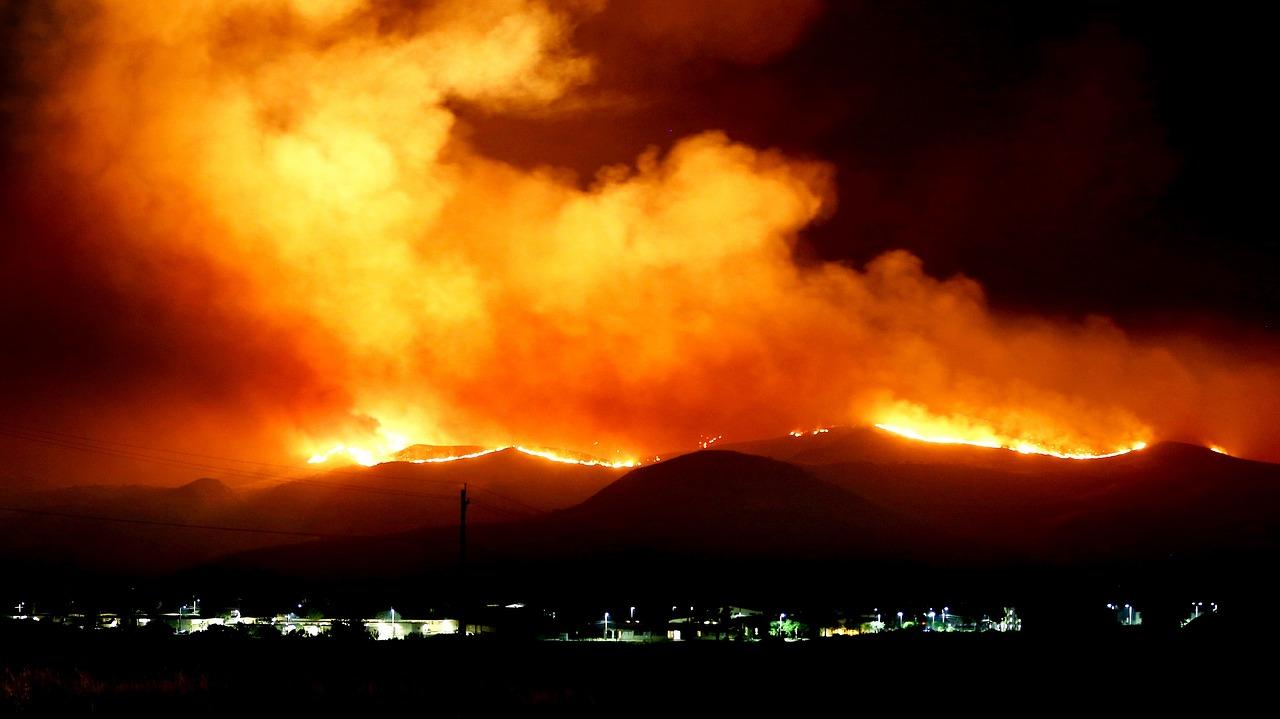 uploads///forest fire _