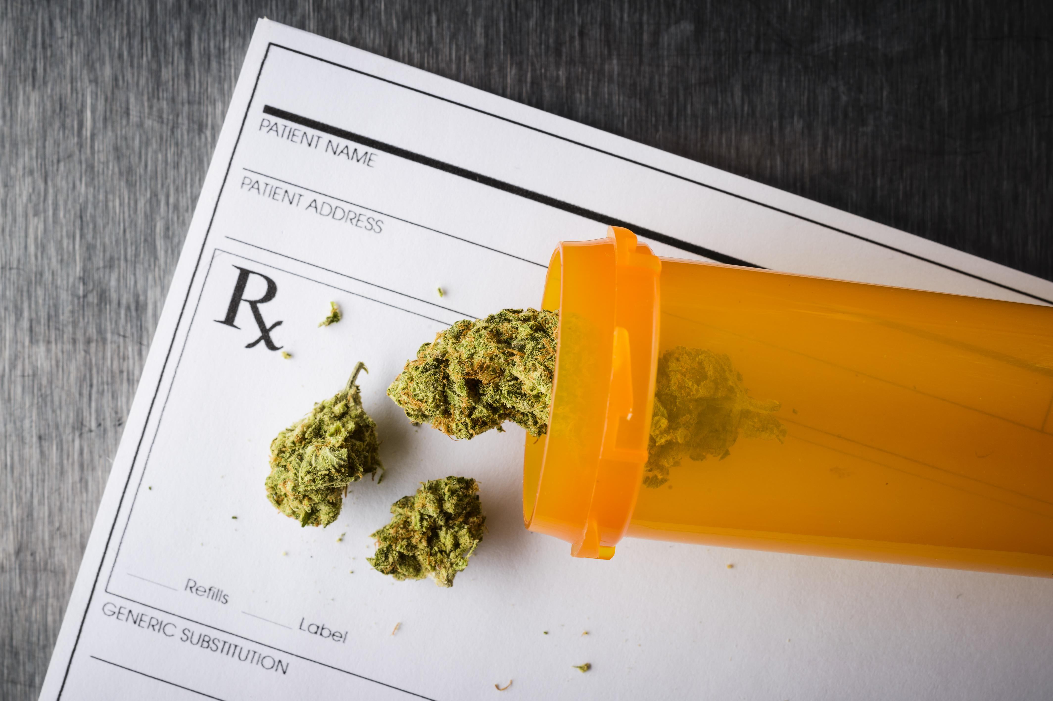 uploads///Cannabis