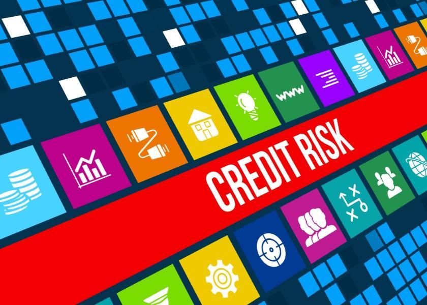 uploads///bank credit risk