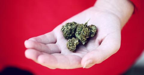 uploads/2020/03/Marijuana89.jpg