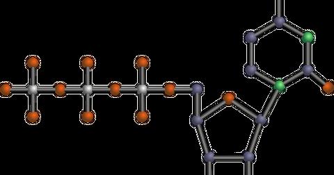 uploads/2018/09/nucleotide-147942_1280.png