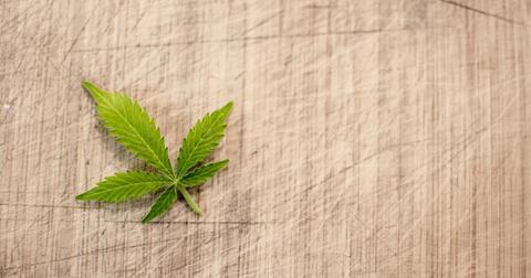 uploads/2019/06/marijuana-3065621_1280.jpg