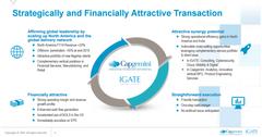uploads///IGTE CAP rationale