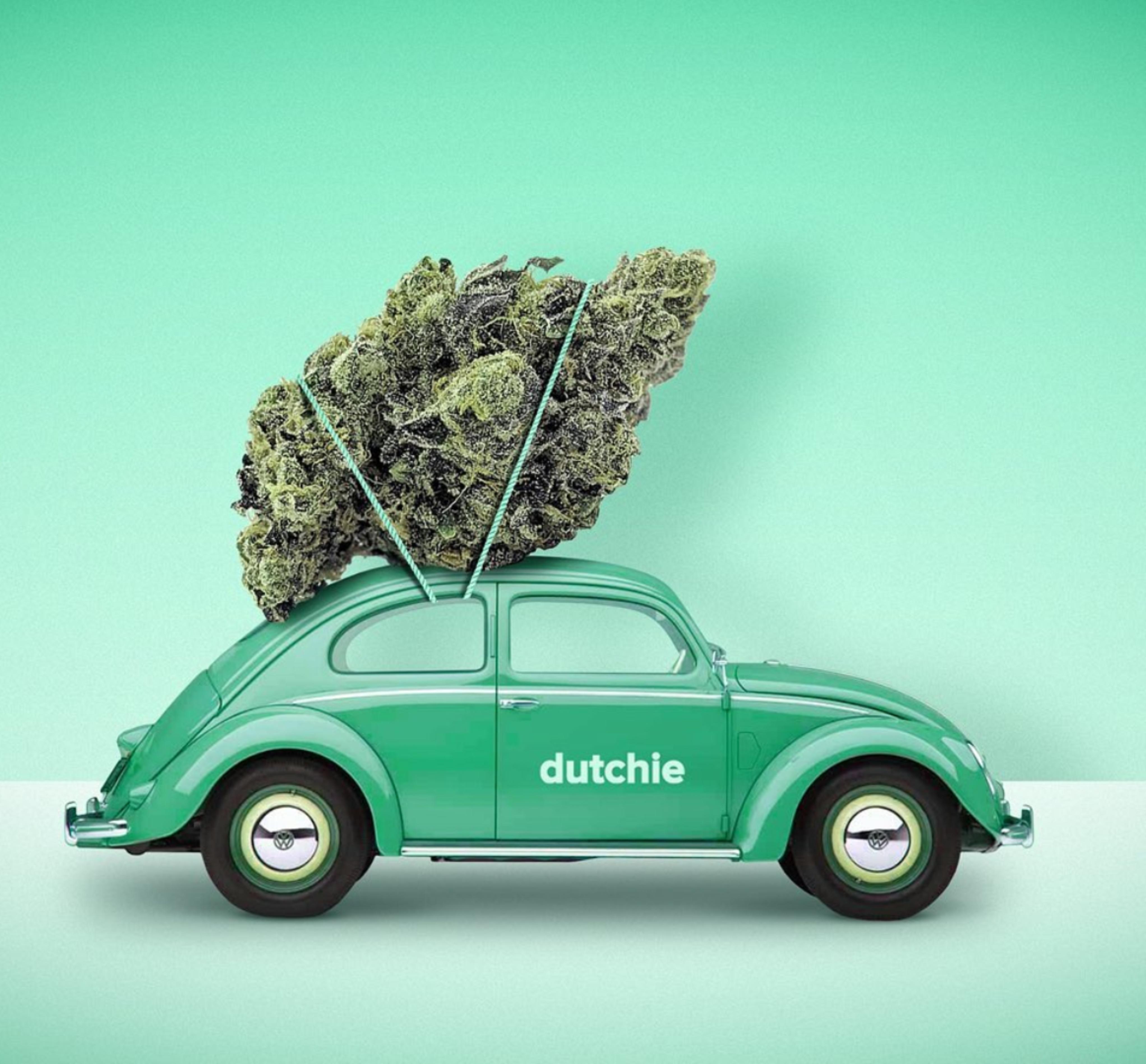 Dutchie car and marijuana