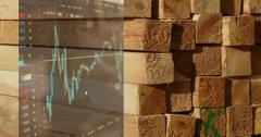 Should You Invest in Lumber Stocks?