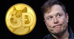 Elon Musk Doge Coin