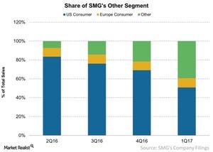 uploads///Share of SMGs Other Segment