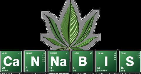 uploads/2018/10/cannabis-2305146_1280.png