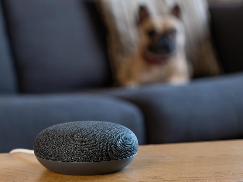 uploads///Google Brazil smart speaker