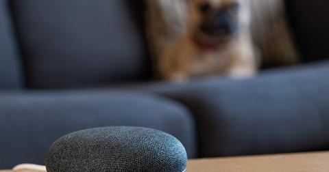 uploads/2019/11/Google-Brazil-smart-speaker.jpeg