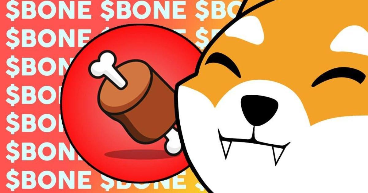 Shiba Inu meme