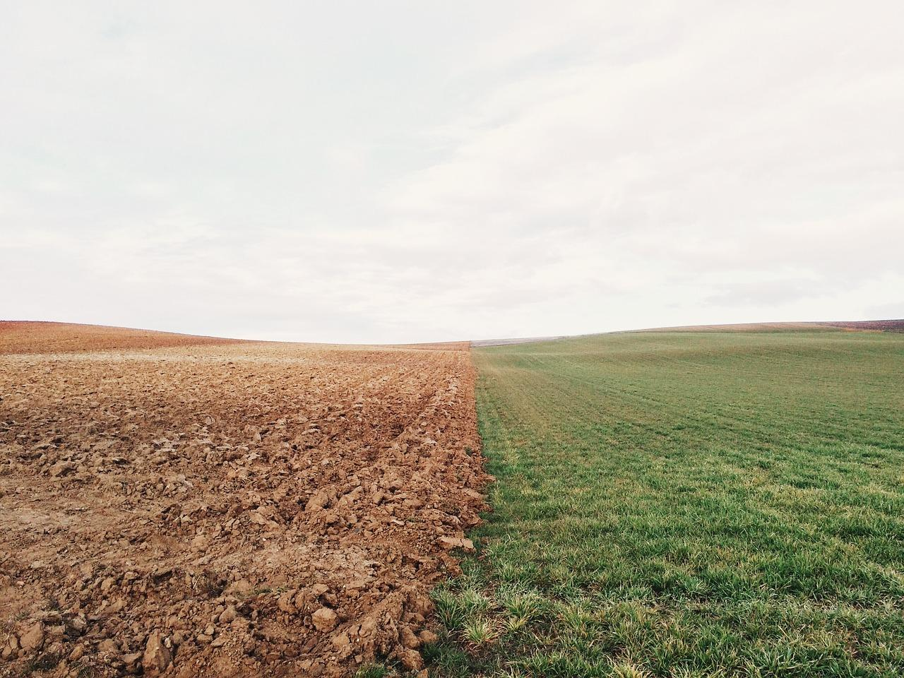 uploads///farmland _