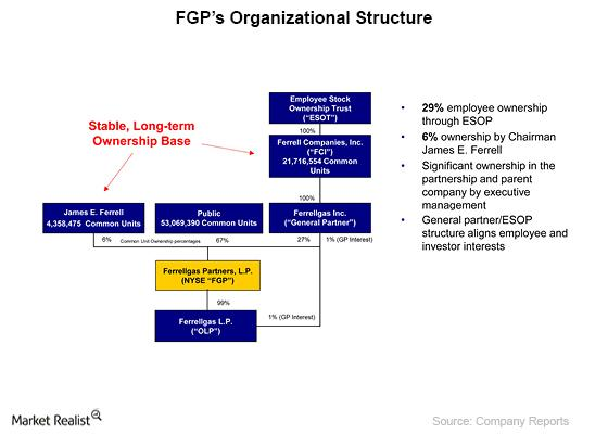uploads///FGPs Organizational Structure