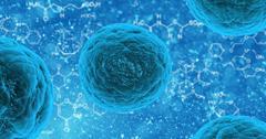 uploads///stem cell _