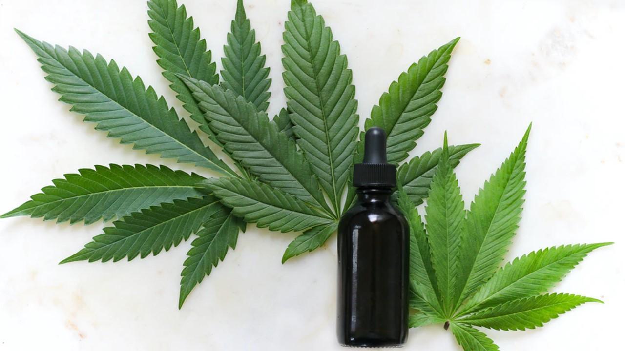 uploads///joe biden marijuana
