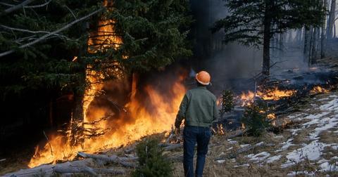 uploads/2018/03/wildfire-1160857_1280.jpg