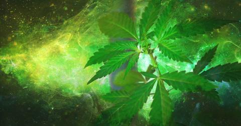 uploads/2018/03/marijuana-1910598_1280.jpg