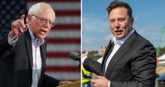 Bernie Sanders and Elon Musk