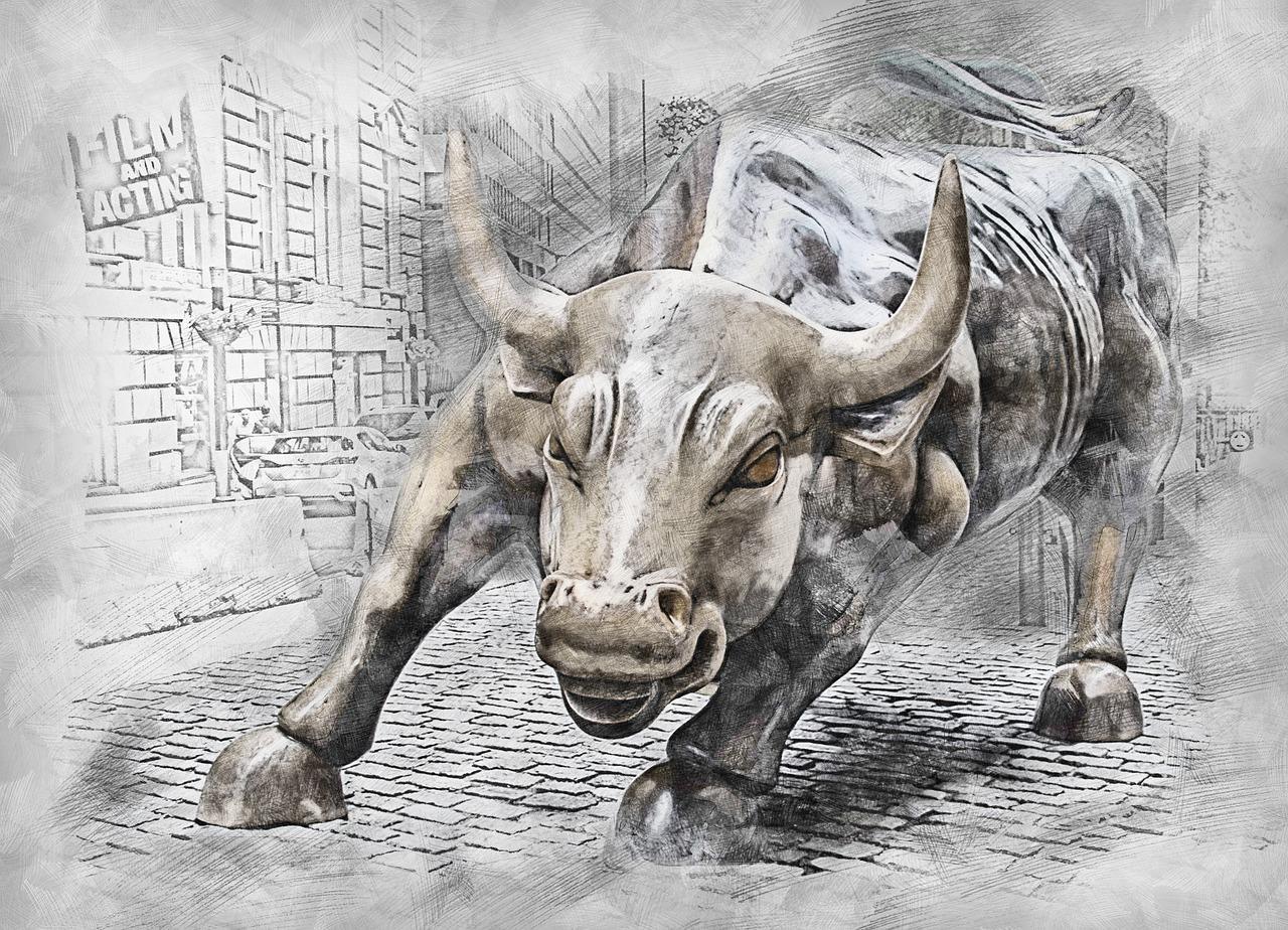 uploads///bull _
