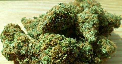 uploads/2019/06/cannabis-448661_1280-1-1.jpg