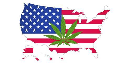 uploads/2019/08/Sanders-on-Marijuana.jpeg
