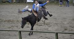 uploads///rodeo _