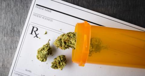 uploads/2019/08/Cannabis-1.jpeg