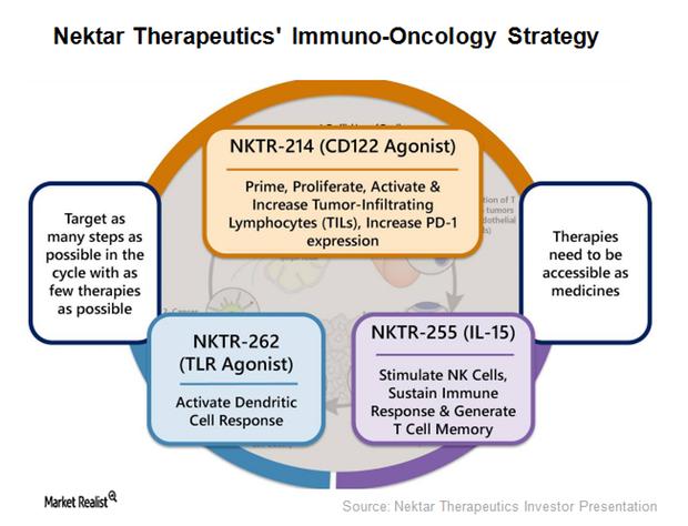 uploads///Nektar Immuno Oncology Strategy