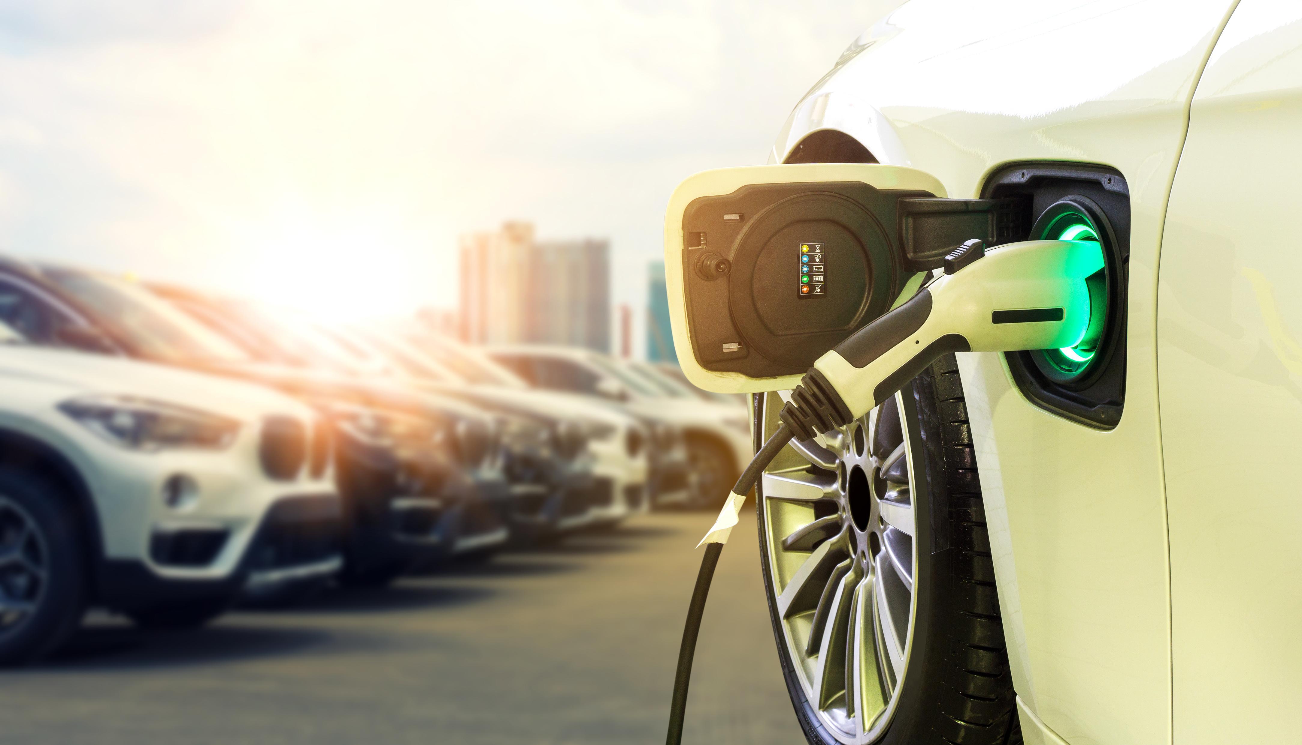 uploads///Chevrolet Bolt versus Tesla Model