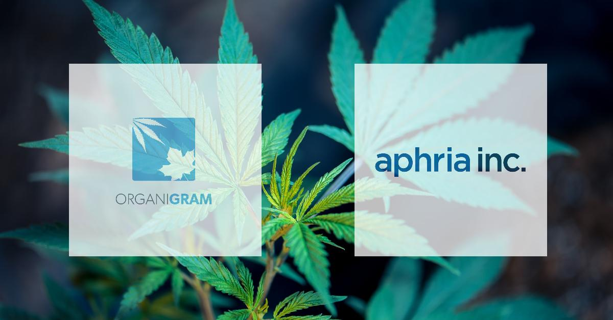 Cannabis plant with OrganiGram and Aphria logos